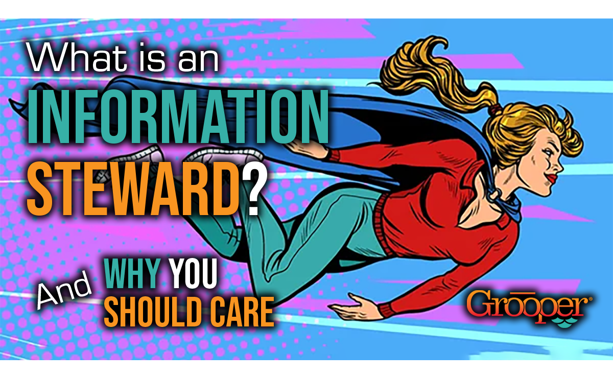 What is an Information Steward, and Why You Should Care